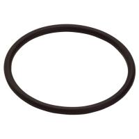 Уплотнительное кольцо Hansgrohe 96006000